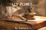 LOGO PLUMES2, lylouanne tumblr com
