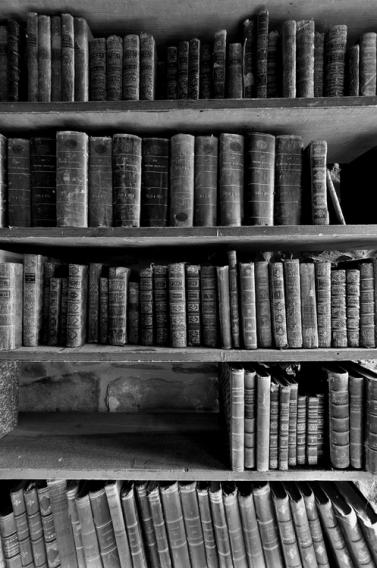 biblio n&b hampshire tumblr