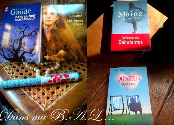 2013-05-25 BB Déja importées2