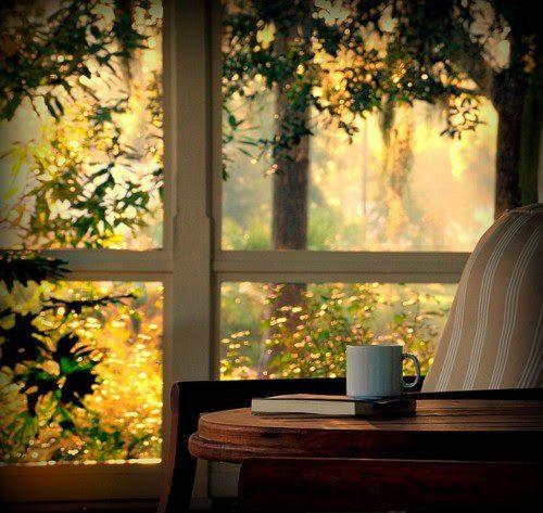 automne dehors tasse et livre wanderlusttywriter