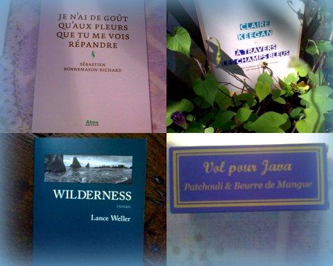 Trois livres dont deux achetés chez mon libraire préféré des Sables d'Olonne : aux Fables d'Olonne ! Et un savon cancalais fait main qui sent très bon, bio en plus !^^