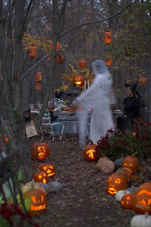 automne citrouilles et fantôme lylouanne tumb