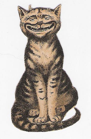 halloween chat désespéré velvetinabat