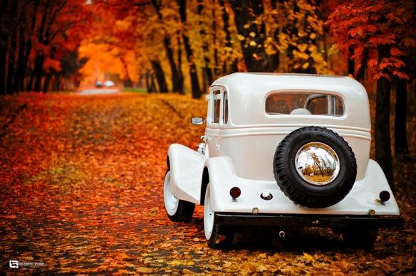 automne & vieille voiture
