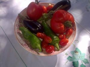 légumes jardin août 13