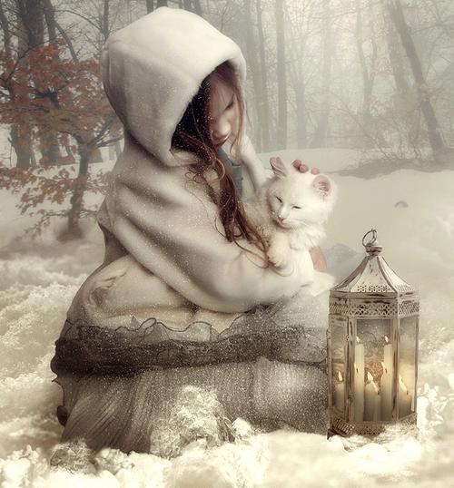 noel petite fille chaton blanc lylouanne