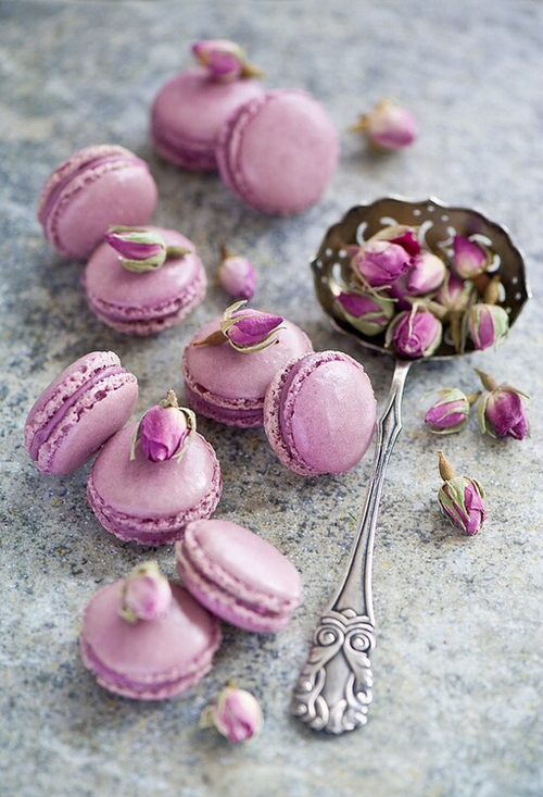 macarons boutons de rose lylouanne