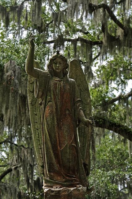 solitude des statues velvetinabat tumb