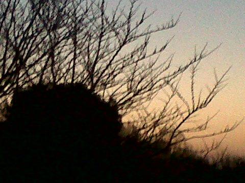 aube mars 7h 14.03.14