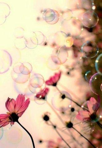 bulles er fleurs tersessenta