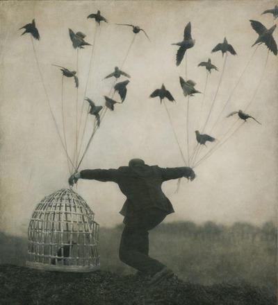 cage homme oiseaux lettresdanslesmots tumblr
