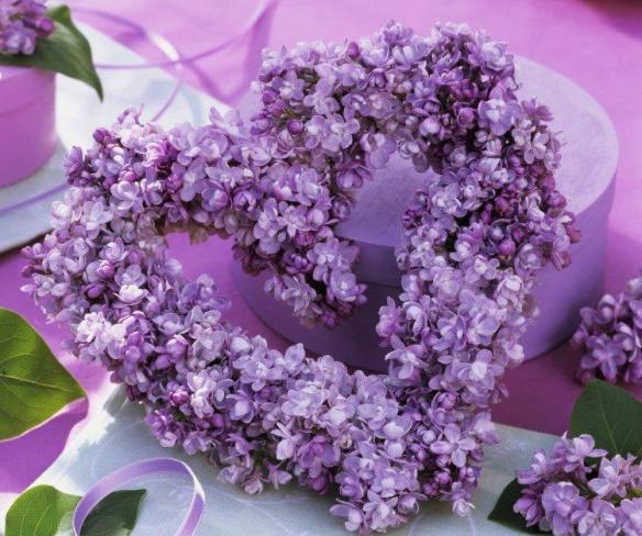 coeuir de lilas sur Fb