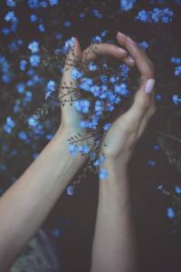 fleurs bleues mains infinite-paradox