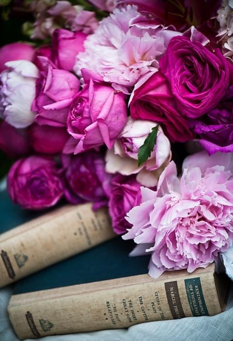 livres pivoines roses  lylouanne