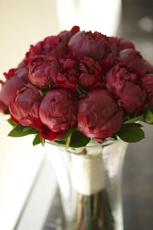 rose bouquet rose orangé pivoines bourons fatinia