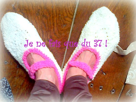 aswap mes chaussons d'ete(1)