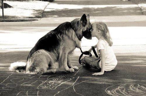 chien petite fille complicité infinite-paradox