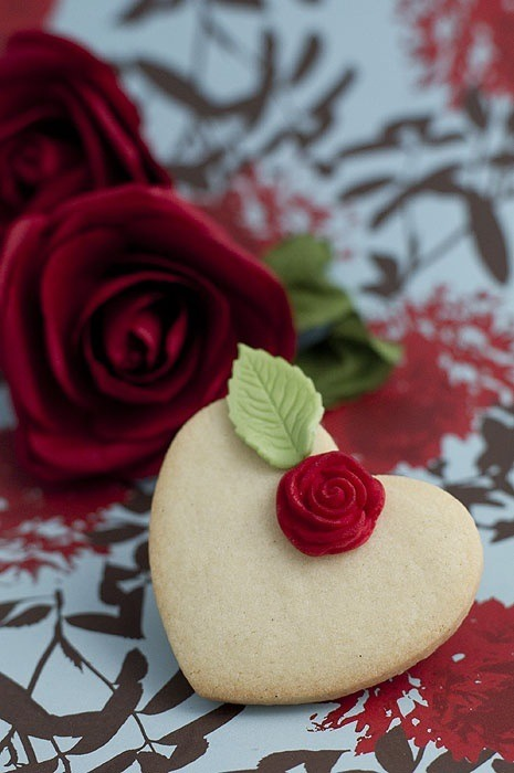 coeur blanc rose rouge comtess-du-chocolat