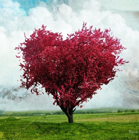 coeur d'automne en arbre