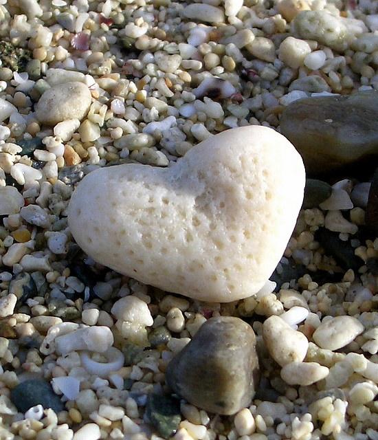 coeur de mer sous les galets pour galéa