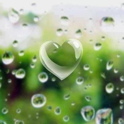coeur de pluie Pink Rose Cottage sur FB