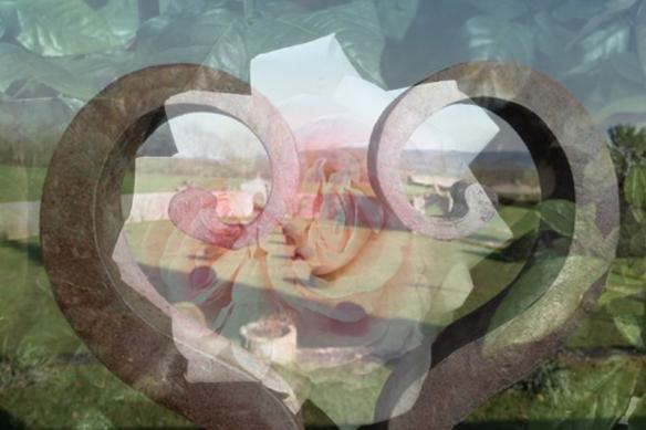 Coeur Soène avec rose superbe