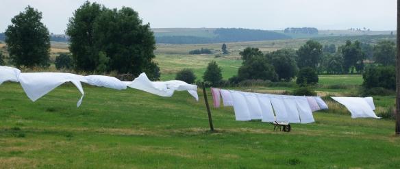 draps blancs au vents image google