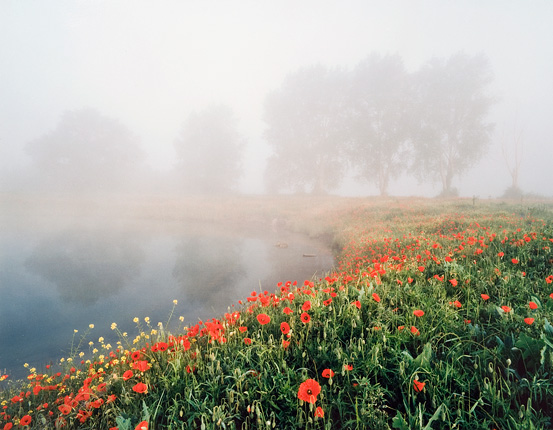 Paysage de l'Aisne, en pays vermandois...