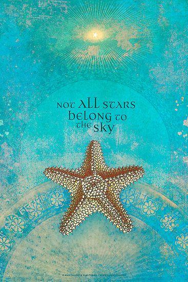coquillage étoile de mer avec texte
