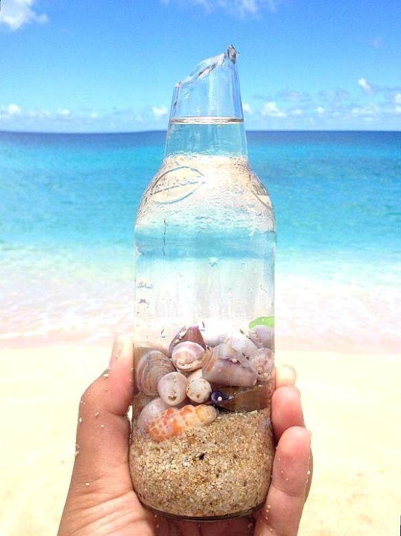 coquillage en bouteille pour les garder