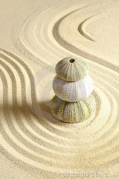 coquillages par trois sur sable nature-and-culture