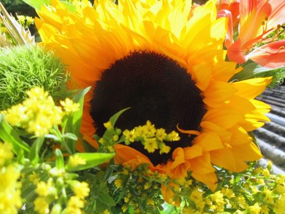 Un hélianthe, repeint par mes soins et une fleur chère à Martine !