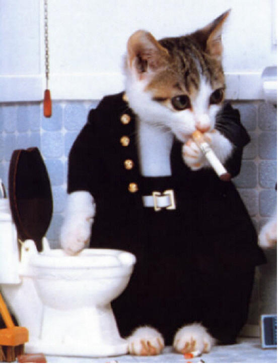 Domi fume en cachette !
