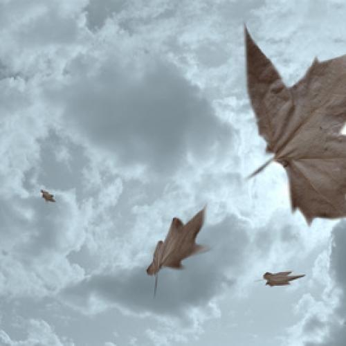 a vent feuilles