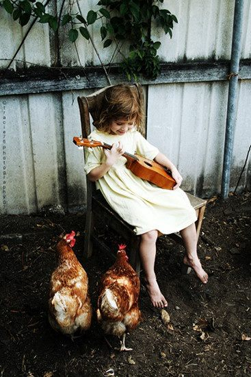 fillette guitare poule