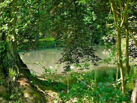 a rimbaud  tilleul rivière