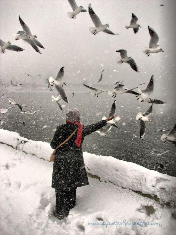 hiver oiseaux et femme seule