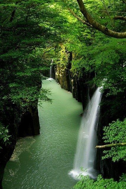 a infini vert paradis rivière