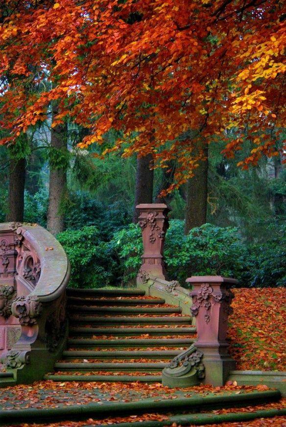 automne 2015 escalier lylou