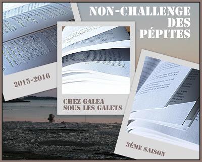 logo-non challenge 2015-2016 - Galéa