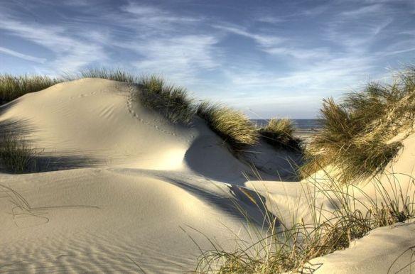 a plage dunes herbes Oléron