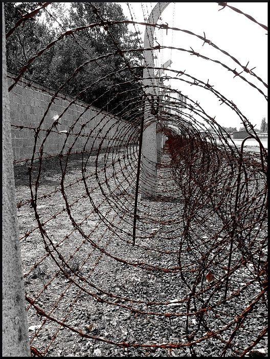 a germain Sachsenhausen